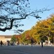 上野公園・・こさのぼ散歩