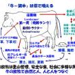 予告!  「富士山岡村牛」の食材の魅力  (ごはんジャパン|テレビ朝日で放送)