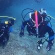 杉並潜水部、ゴリラをチョップする。