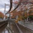 2017.11.11 千葉市中央区栄町: 葭川の秋景色
