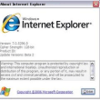 Internet Explorer 7 (Beta 2) ~Winユーザ向け~
