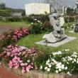 島田市バラ公園散策してきました!