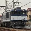 EF641046