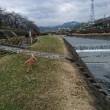 大雨後の水無川