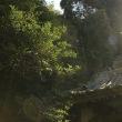鎌倉の苔むす「松葉谷 妙法寺」の写真いろいろ、プラスおやつ!