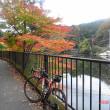 「嵐山渓谷&鎌北湖」の紅葉状況取材サイクリング 2018