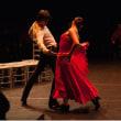「カルメン」、舞踊的表現~アントニオ・ガデス舞踊団公演