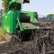 「梨木の剪定枝」が発電燃料に出荷されていました