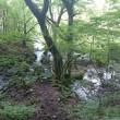 三俣山と坊がツル