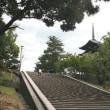 ¥ 古都で出会った、エナガの姿、ドキドキ眺め ¥ N公園(奈良県奈良市)