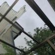 台風一過の日曜日