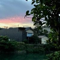なんとか、今日まで晴れが続きそう。次の台風も気になります。