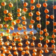 集落の吊し柿