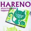 12/4  フォトスタジオ・ハレノヒ   幸せの かぎしっぽちゃん