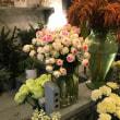 喜びも悲しみも「4匹のねこ」とともに ・・・ flower gift on happy nor sad time