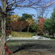 茨大農学部の秋の風景