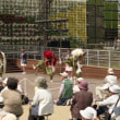 2005年 愛知万博 思い出の記録 (其の三)