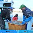 3月号の表紙は「日本海ニシン 沿岸刺し網好調(厚田漁港)」です