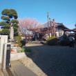 菩提寺の初回向