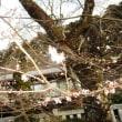 身延山・久遠寺と佐野川温泉の旅