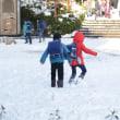大雪(2018)