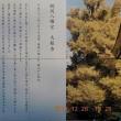 稲村ケ崎の夕日と鎌倉の写真