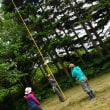森の調査実習