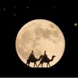 """アコーディオンの練習 """" 月の砂漠 """""""