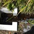 軽井沢のいろいろ 軽井沢の水の流れが・・