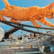 猫島(湯島)写真展