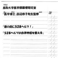 ゼロ磁場 西日本一 氣パワー 開運引き寄せスポット 薬を飲む前に528ヘルツを!(3月3日)