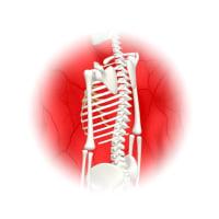 脊髄損傷の再生医療で回復した未承認治療薬の存在が気になる