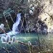 横谷峡、四つの滝ぶらり