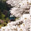 春の樽見鉄道 日当駅