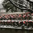 雪の東京タワーと増上寺