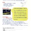 落合恵子さんが来ます! 7月7日(日)