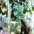 クリスマス 安城市デンパーク