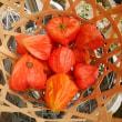 今日の歳時記、収穫祭