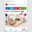 ◯ iOS11. iPhone //アップデートでめっちゃ便利に! iPhoneの新機能・裏技まとめ