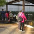 玉川上水に親しむ会・第250回例会~野川と湧水群を辿る
