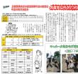 市政・議会報告‐ビラのページ [2018年6月議会]