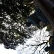 南九州写真館