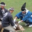 奈良公園 鹿の角きり2