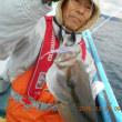 12/7 南房総 乙浜港 安房丸 エビング釣行記