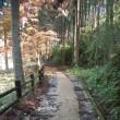 秋の北山キャンプで「ぜんざい」作り