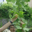 2回目タツノコ保育園