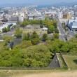 四国の城巡り・丸亀城