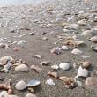 風が吹いた後の浜辺
