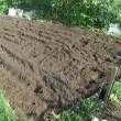 夏から秋冬への畑に畝作り