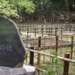 曽木の滝&発電所跡